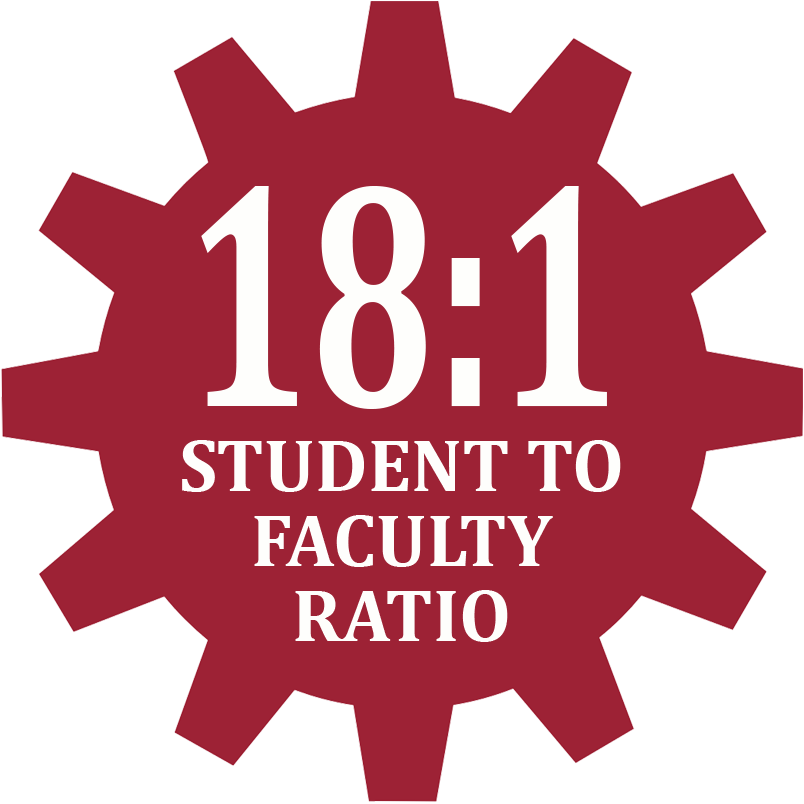 18:1 Student to faculty ratio